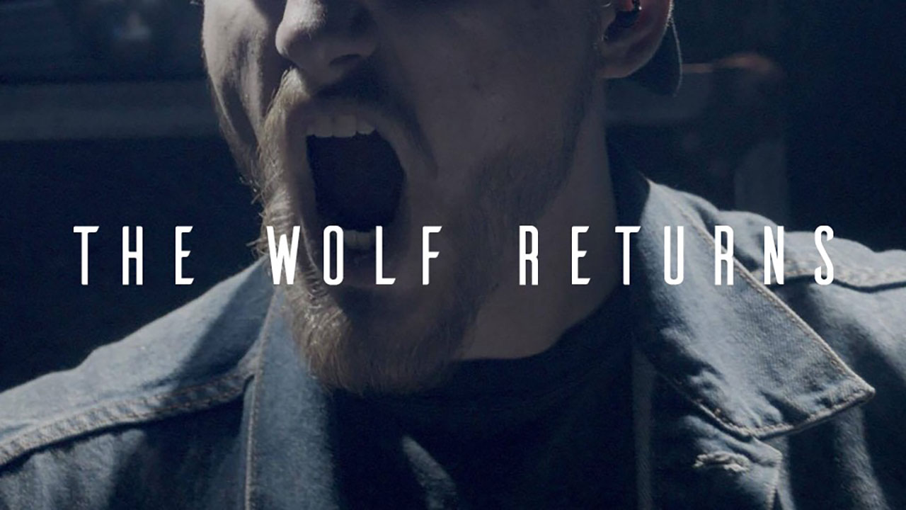 Disco-Nected - The Wolf Returns